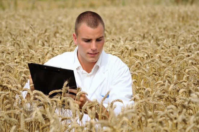 Агроном: в чем суть профессии, ее достоинства и недостатки